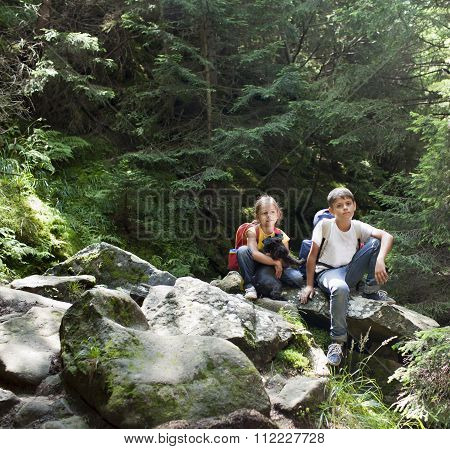 Children in woods. Happy hikers in mountains