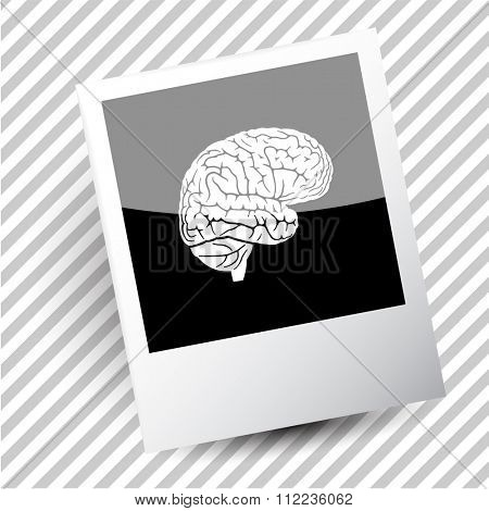 brain. Photoframe. Raster icon.