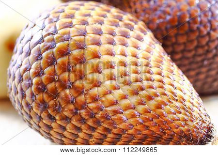 Exotic Salak Fruit