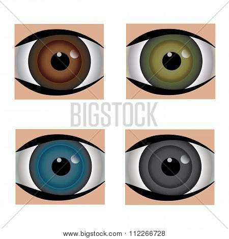 Set- Four Common Eyeball Colors