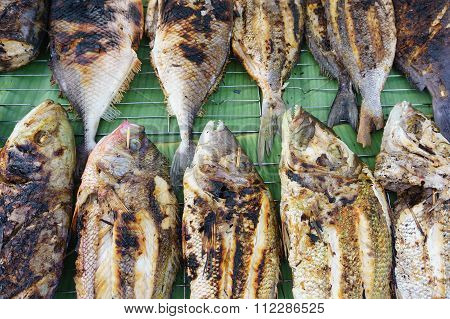 Grilled  Fish At Sabah Malaysian Borneo Night Market Eatery Display.