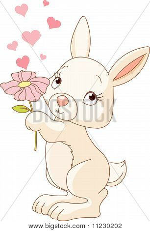 Bunny With A  Flower