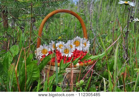 Basket with berries and flowers