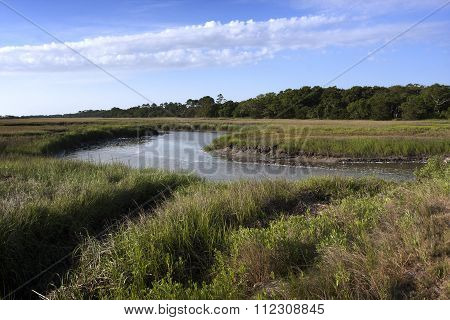 Flowing through the Jekyll Wetlands