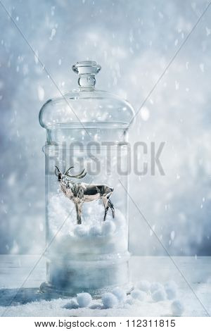 Stag in a snow globe with blue cold tone