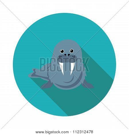 Flat  Icons Walrus