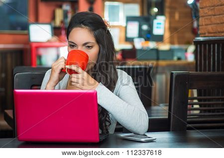 Attractive brunette wearing grey sweater sitting at restaurant table working with pink laptop and ho