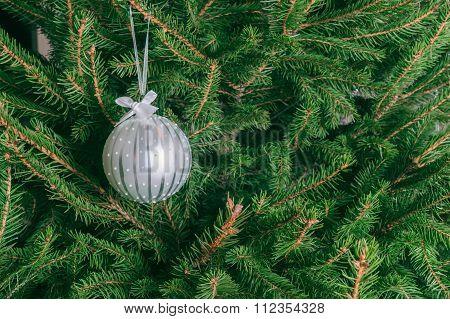 White Glass Ball Hanging On The Christmas Tree.