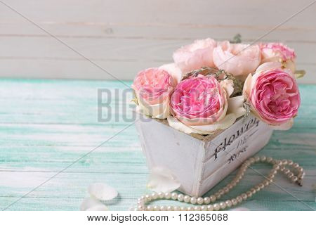 Pink Roses In Wooden Pot   On Turquoise Background Against White Wall.