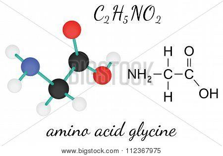 C2H5NO2 glycine amino acid molecule