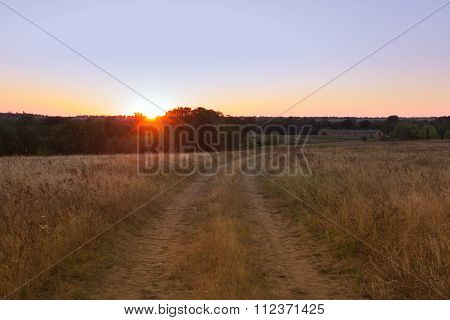 Yellow Field With A Forked Footpath At Sunset