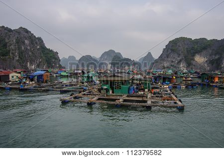 Ha-Long Bay, Vietnam, 3 January 2015: Floating Village