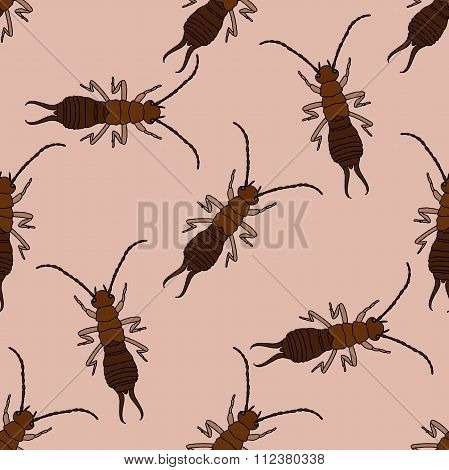 Seamless pattern with  Earwig .Forficula auricularia. hand-drawn Earwig . Vector