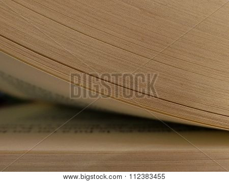 Book Page Being Opened