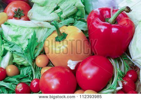 Bell Pepper, Tomato. Iceberg Lettuce