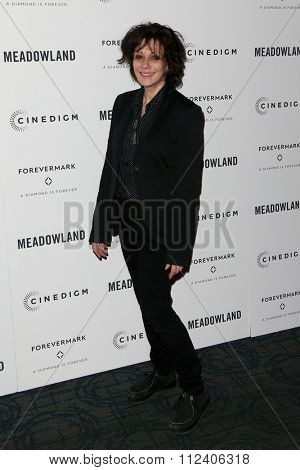 NEW YORK-OCT 11: Director Amy Heckerling attends the premiere of 'Meadowland' at Sunshine Landmark on October 11, 2015 in New York City.