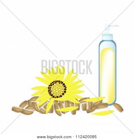 Sunflower Oil And Yellow Sunflower With Seed