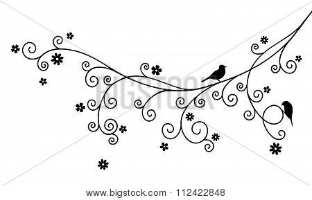 Vector illustration of curly blossom tree branch and two birds on white background. Black color.