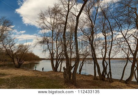 View of Volga through trees