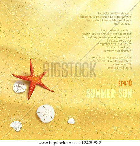 Sunny Dunes With Starfish