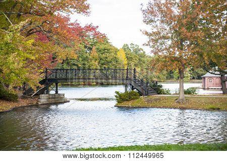 Iron Bridge In Park