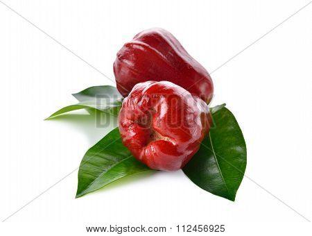 Rose Apple On White Background