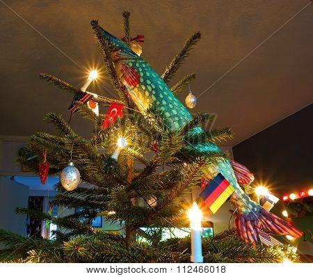 Fish and a Christmas tree