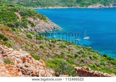 Coastal Summer Landscape Of South Corsica