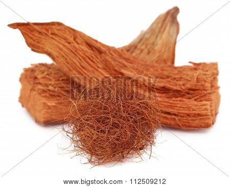 Coir Of Coconut