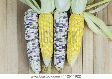 Corn And Products
