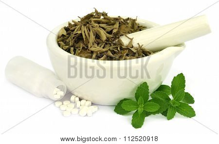 Dry And Fresh Stevia Leaves With Pills
