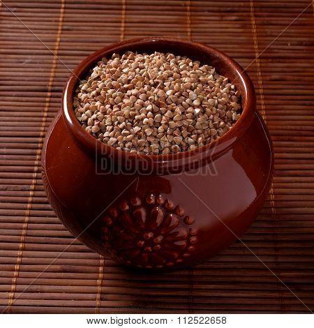 Buckwheat in a pot