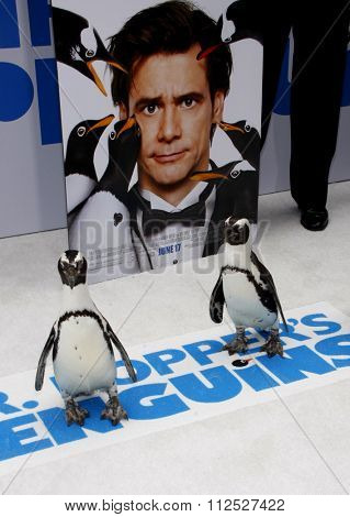 HOLLYWOOD, CALIFORNIA - June 12, 2011. Penguins at the Los Angeles premiere of
