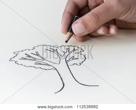 A Child Drawing A Tree With A Very Short Pencil Stub? Expressing The Concept Of The Conservation Of