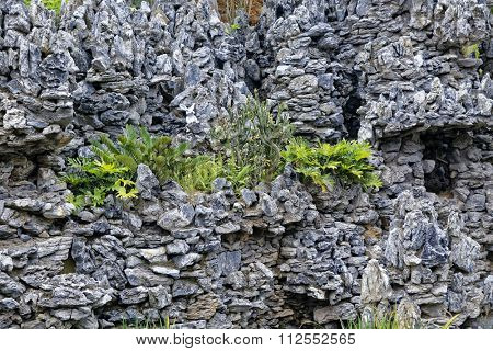 hard landscaping, stone and grass