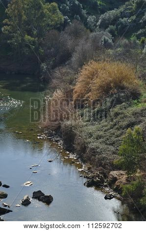 Oeiras Creek And Vegetation In Alentejo