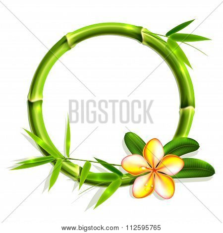 Bamboo Frame With Flower. Vector Illustration, Eps10.