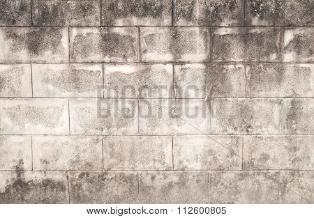 Grunge Background And Texture For Any Design