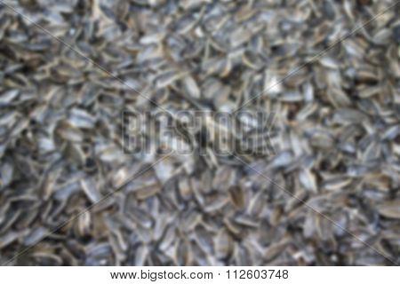 Organic sunflower seed blurry background, Sunflower seeds