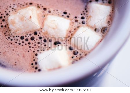Hot Chocolate 'N' Marshmallows