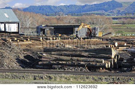 Logs Sawmill