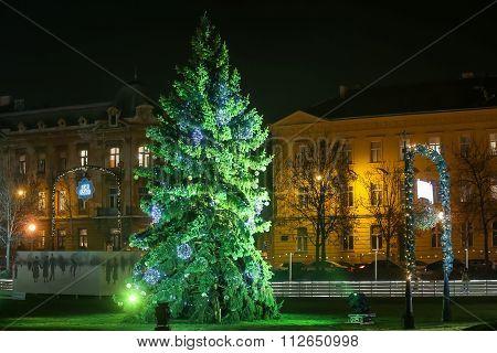 Christmas Tree In Zagreb