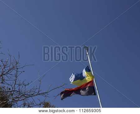 Flag Of Ukraine And The Right Sector