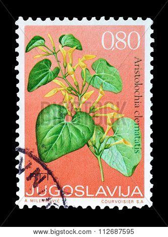 Yugoslavia 1973