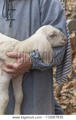 Lamb With Shepherd