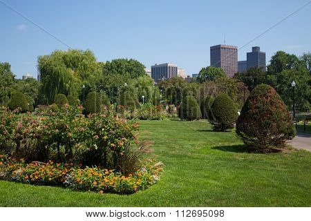 USA, BOSTON - 05 SEP, 2014: Boston Public Garden at autumn sunny day.