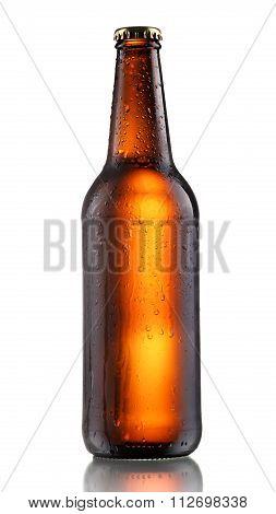 Dark Beer Bottle