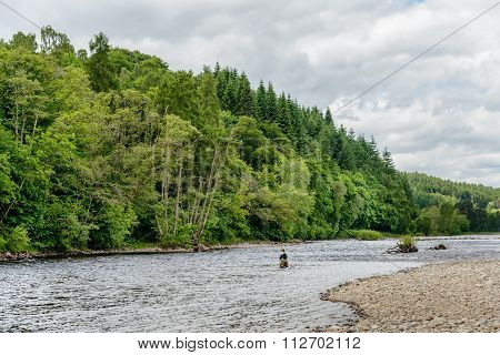 Fly Fishing On The River Tummel
