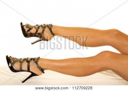 Woman Snake Skin Heels Legs Toes Pointed