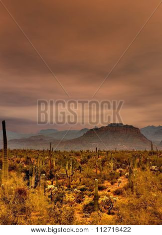 Sonora Desert Mountains